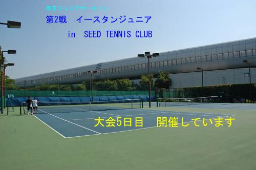 DSC_0012-500.jpg