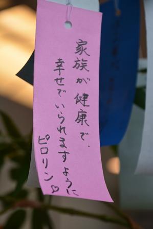 DSC_0112-450.jpg